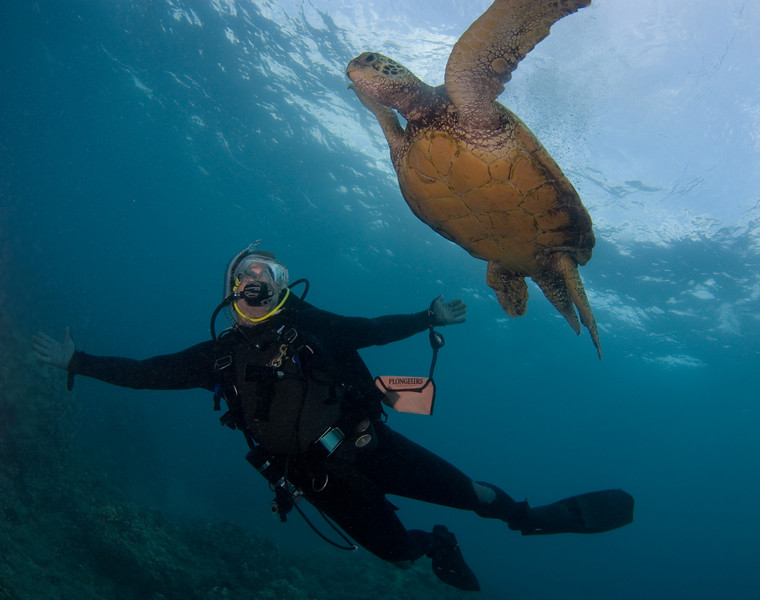 """penelope foo scott with turtle 5 graves, maui nikon d80, 10mm lens, dual ys-110's """"so many turtles we had to push them out of the way"""""""
