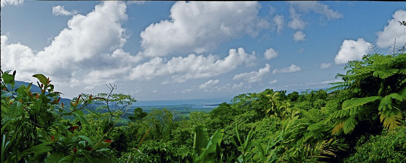 """marta evry australia The second is of the Daintree Rainforest. Both were near Port Douglas, the port   where the """"Underwater Explorer"""" was based. Both were taken with a Widelux panoramic   35mm film camera."""