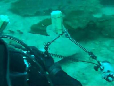 Penelope foo video of Scott Gietler photographing an angel shark Little farnsworth, Catalina, April 26th fuji F30