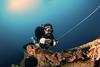 The Eagle shipwreck, Florida Keys