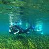 Laura starts her dive
