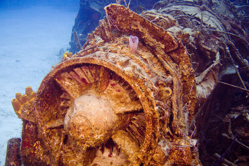 The wreck of the Capt. Keith Tibbetts.