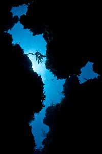 20100624_cayman_3429