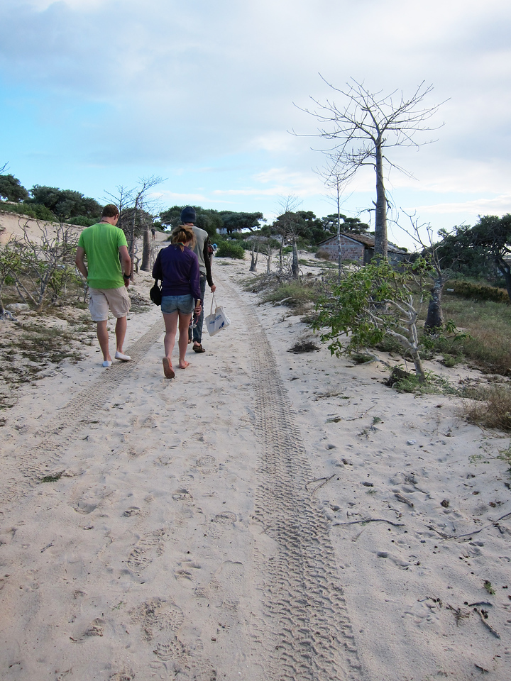 Path back from meals to volunteer huts.