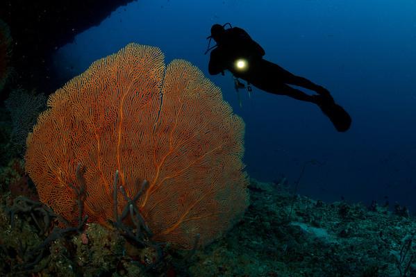 2011__Maldives__2880