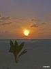 m_sunset