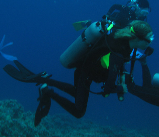 Ian dives with a group of other divers