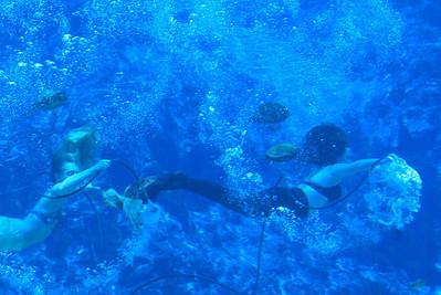 Singing under water!