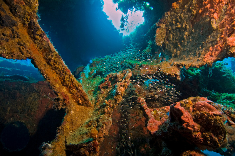Inside the fallen smokestack on the Unkai Maru