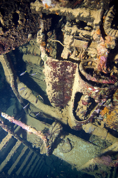 Engine room on the Sutsuki Maru