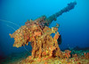 Gun on the Aikoko Maru
