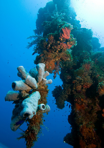 Mast of the Unkai Maru