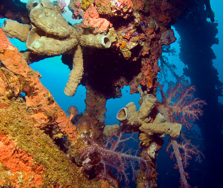 Superstructure of the Fujikawa Maru