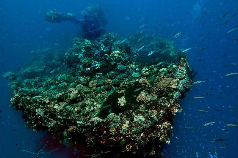 The Fujikawa Maru
