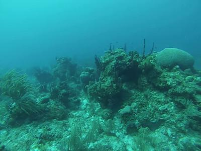 NCL Cruise 2014 4-15-14 Cozumel