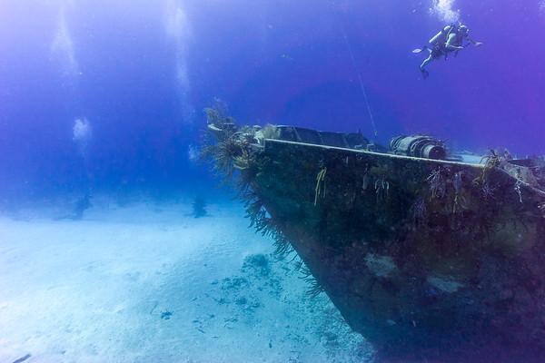 Nassau & Aquacat 2017