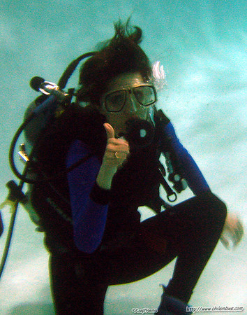 Pool at Dolphin scuba