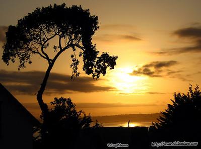 Monterey, Sunrise