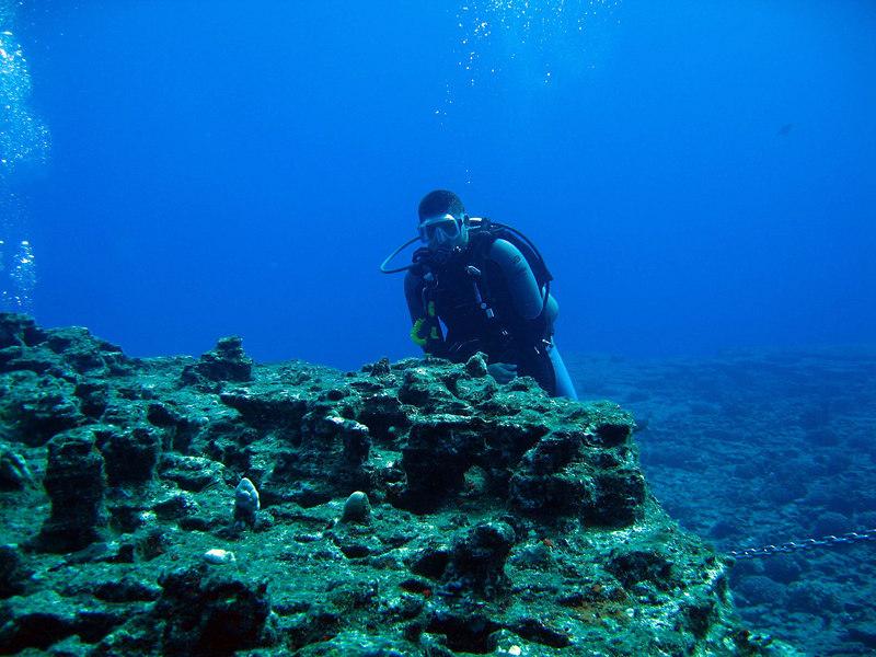 Divemaster Luke of SeaSport Diving