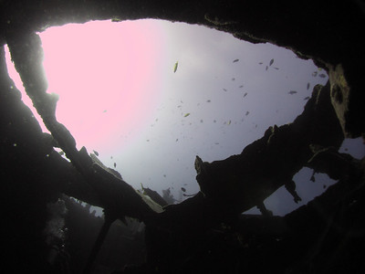 From inside the San Pedro