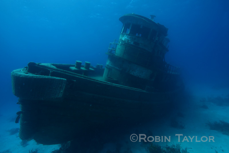 The Anthony Bell is our newest wreck, sunk last summer.