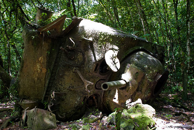 The WWII Battle of Peleliu was one of the bloodiest in the Pacific theater.  A U.S. tank lies in the jungle where is was hit and destroyed over six decades ago.