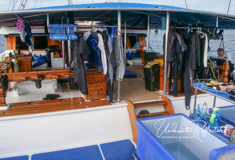 Suits are hung in between dives around the back deck, with dedicated camera rinse tanks (blue in the foreground).  There are also separate rinse buckets for masks and for wetsuits, which the crew rinse and hang to dry after each dive.  Then, prior to the next dive, the crew drapes each diver's wetsuit(s) over their tank (a service that I've never seen on a liveaboard before!).