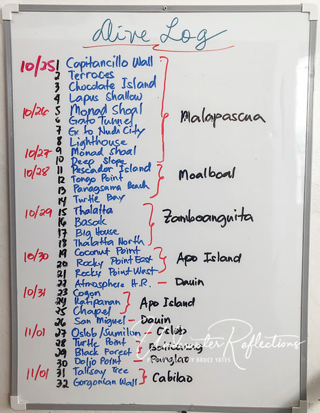 These were all of the possible dives.  I only did about 2/3 of them, in part because I was sick with a cold for several days.  Highlights were the beautiful hard corals of Apo Island, muck diving at Dauin, and beautiful soft corals the last two dives (Cabilao).