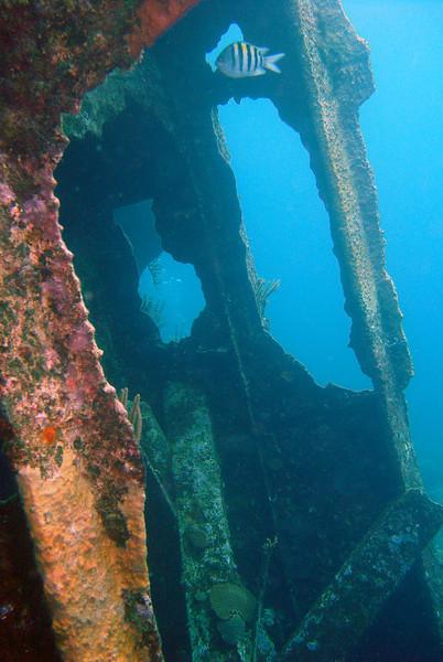 062206_DSC151601 / Outside the wheel house on the 1939 Pelinaion shipwreck, Bermuda