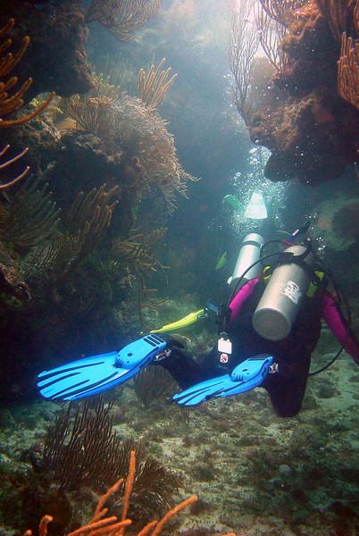 062206_DSC151664 / Divers entering swim thru in coral reef, North Rock, Bermuda