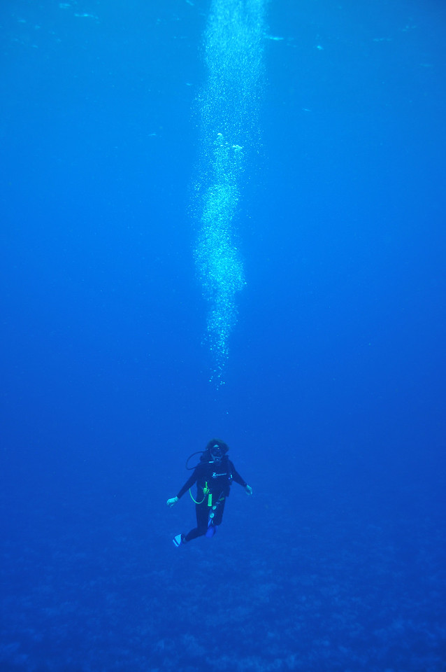 Viki Coyne, Tortuga Reef, Cancun - November 2012