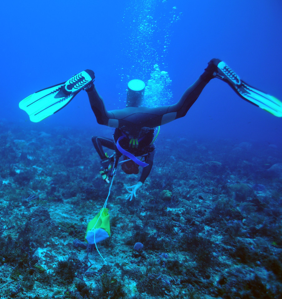 Enrique Rodriguez asking if all are okay, Tortuga Reef, November 2012