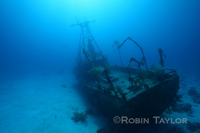 The stern of the Sea Viking, a fishing vessel sunk deliberately near some of our most beautiful reef.