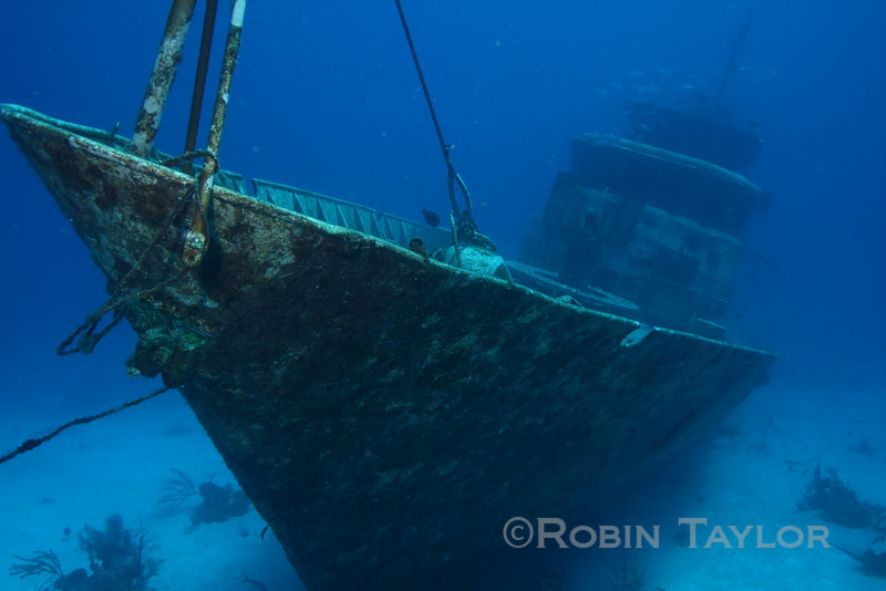 The bow of the Port Nelson, a 130 foot Royal Bahamas Defence Force patrol boat turned artificial reef.