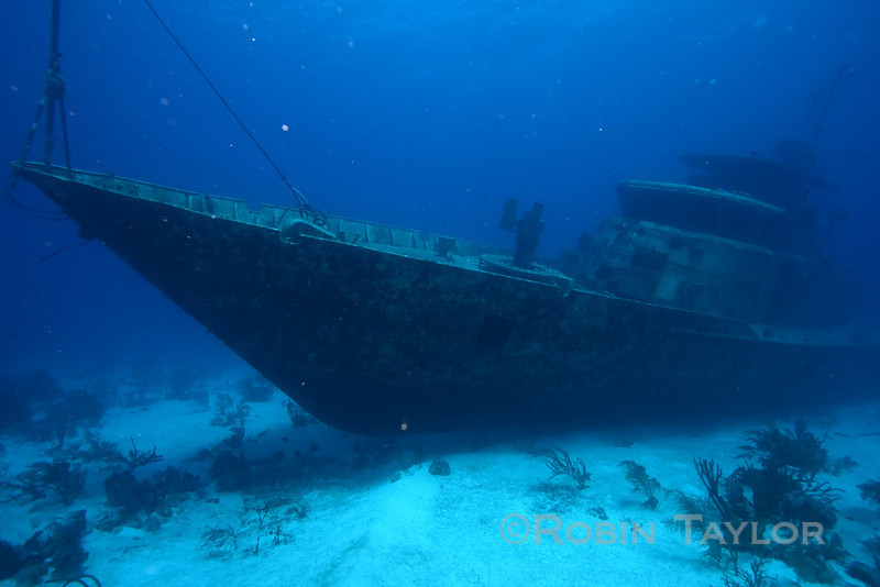 The bow is quite striking, a contrast to most of the wrecks in the area.