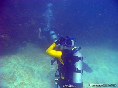 Scuba Divers, Bird Island, Puerto Penasco, Mexico.