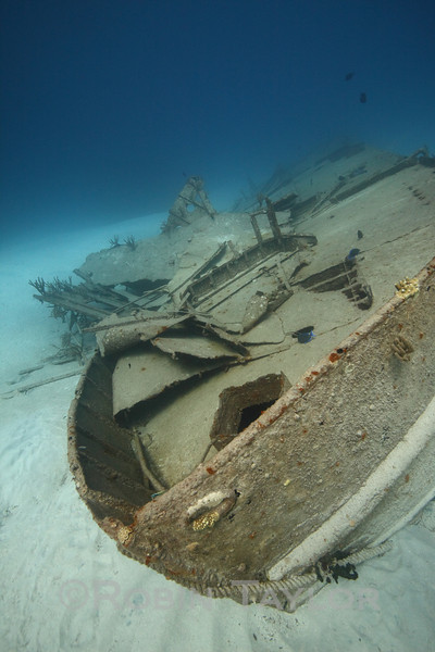 "The bow of ""Bahama Mamma"" an old booze-cruiser sunk as a reef, and subsequently crushed by storms."
