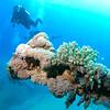 Abu Ghusun wreck (MS Hamada).