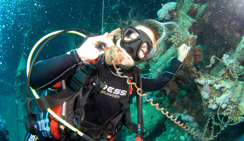 Dive-guide Kristel has found a telephone on the Abu Ghusun wreck.
