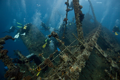 Divers. Extremely common around Red Sea wrecks.