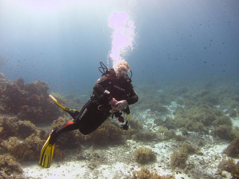 Gail at shark & yolanda