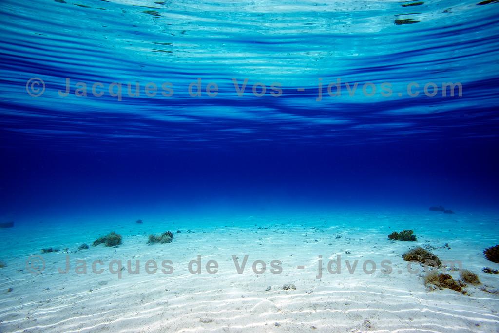 Seascape - Red Sea (Blue Lagoon)