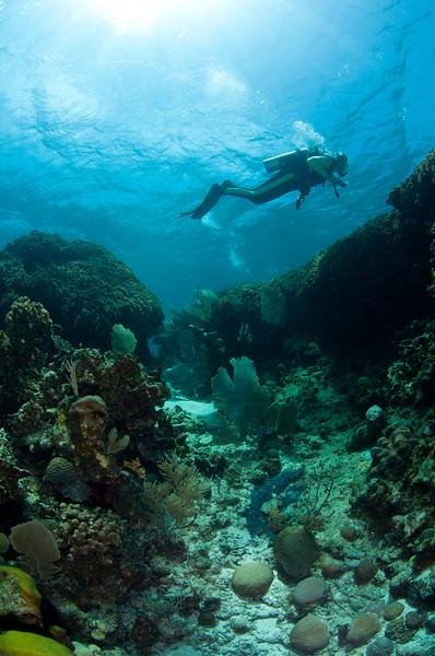 Craig exploring the reef