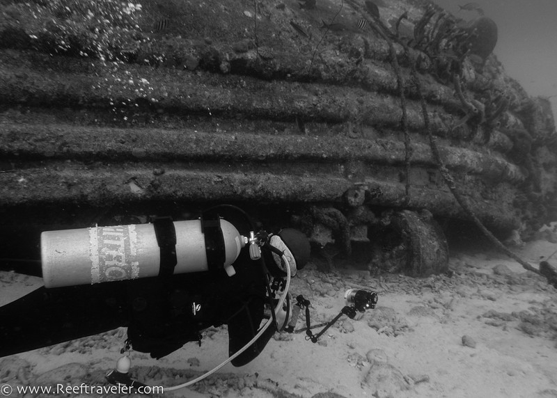 Diver at Front Porch Site