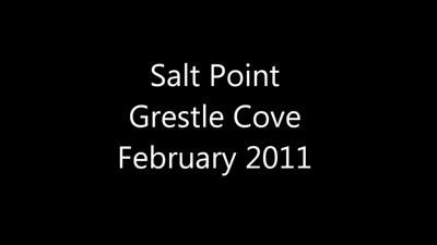 salt point scuba diving