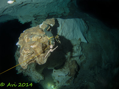 Why the dive is called Barbi Line