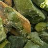 Padded Sculpin<br /> Sund Rock, Hood Canal, WA<br /> 20080809