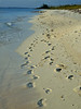 San Sal Beach