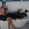 Dave and the dogs