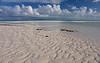 Beach - low tide - Osprey Cay